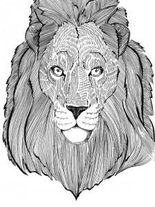 2012 lion